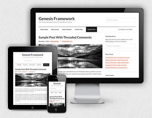 10 Best Wordpress Theme Frameworks in 2020 2
