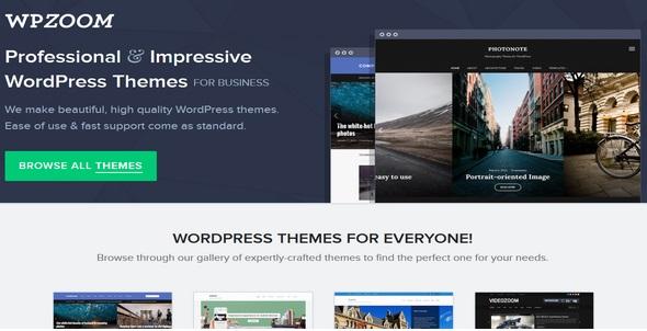 10 Best Wordpress Theme Frameworks in 2020 9