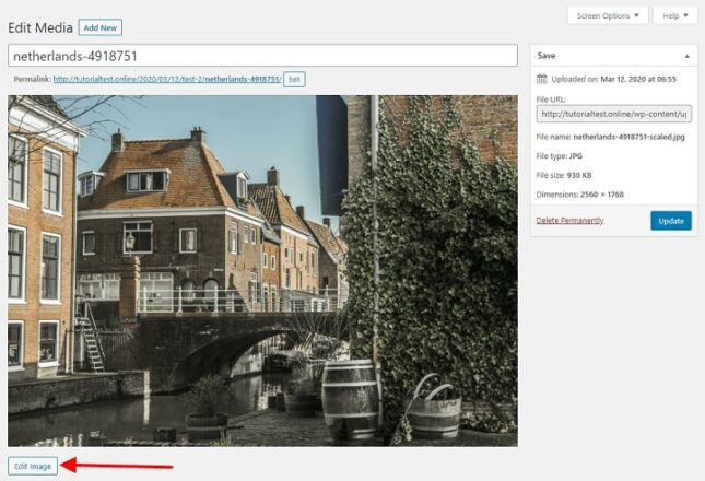 Serve Scaled Images: Improve Your Site Performance 3